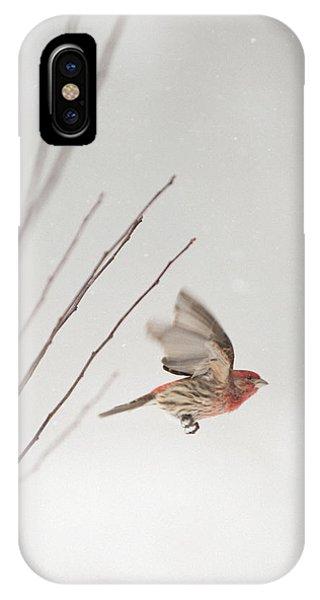 Winter Wind Surfing 1 IPhone Case