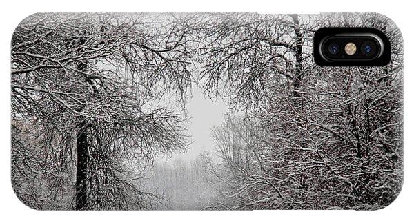 Winter Wonderland II IPhone Case