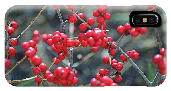 Winterberries IPhone Case