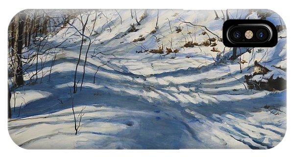 Winter's Shadows IPhone Case