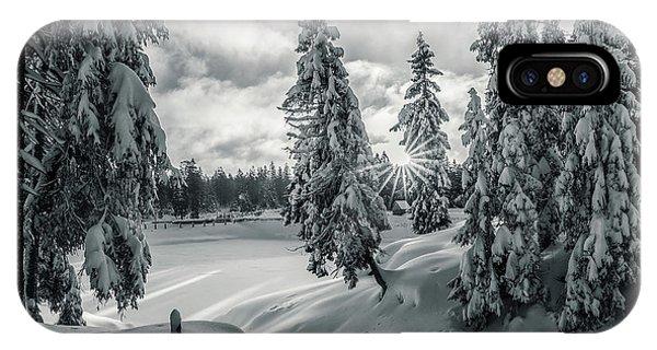 Winter Wonderland Harz In Monochrome IPhone Case
