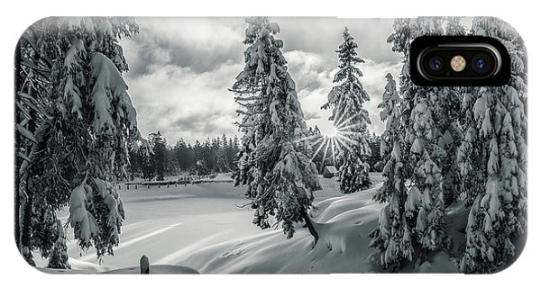 Winter Wonderland Harz In Monochrome IPhone Case