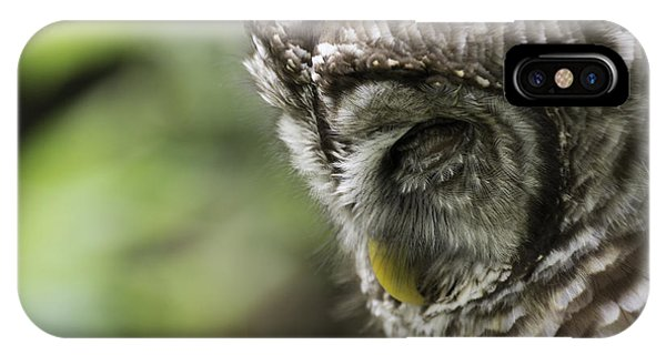 Wise 'ol Owl IPhone Case