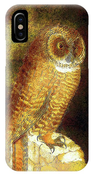 Modern iPhone Case - Wisely Whimsical Golden Owl by Georgiana Romanovna
