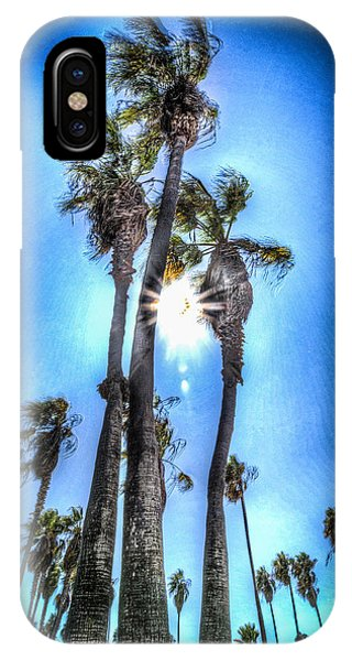 IPhone Case featuring the photograph Wispy Palms by T Brian Jones