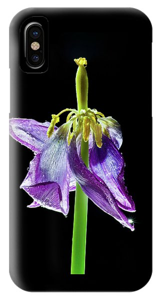 Withering Beauty IPhone Case
