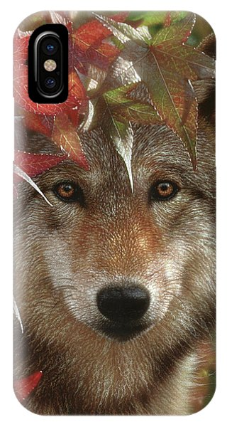 Wolf - Autumn Encounter IPhone Case