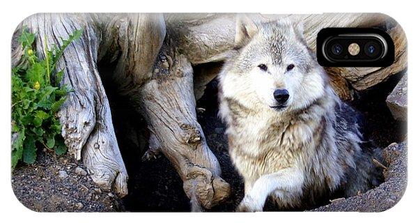 Wolf Den 1 IPhone Case