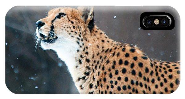 Wonder Of Snow IPhone Case