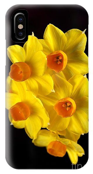 Wonderful Jonquils IPhone Case