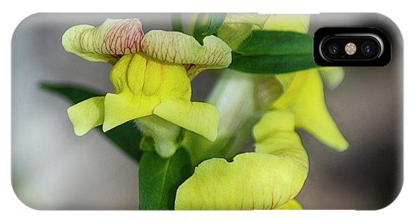 Wonderful Nature - Yellow Antirrhinum IPhone Case