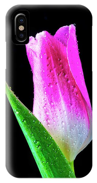 Black Tulip iPhone X Case - Wonderful Pink Tulip by Garry Gay
