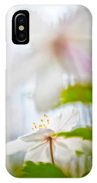 Wood Anemone Spring Wild Flower Abstract IPhone Case