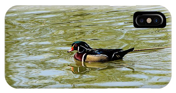 Wood Duck IPhone Case