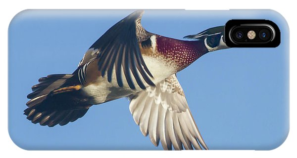 Wood Duck Flying Fast IPhone Case