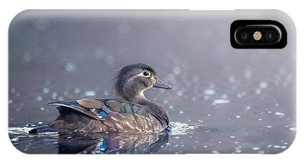 Wood Duck Hen IPhone Case