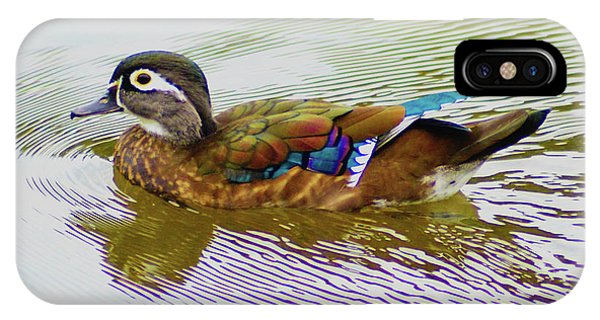 Wood Duck Hen IPhone Case