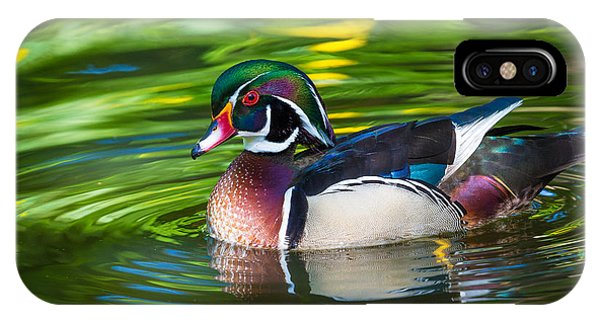 Wood Ducks iPhone Case - Wood Duck by Inge Johnsson