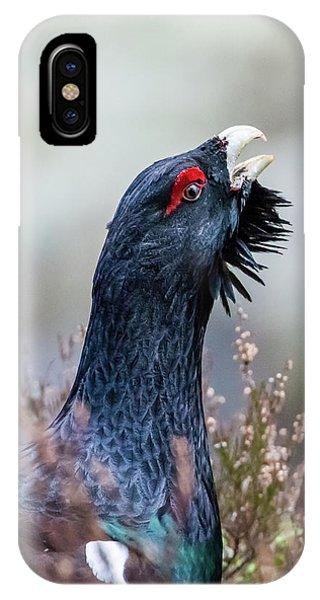 Wood Grouse Portrait IPhone Case