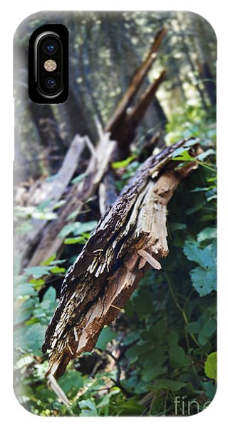 Wood In The Forest IPhone Case
