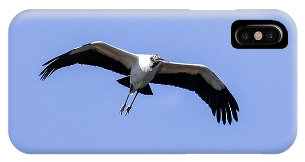 Wood Stork IPhone Case