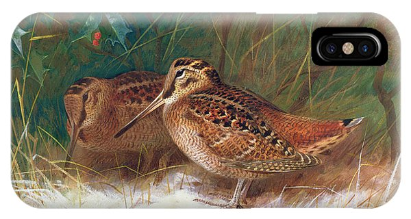 Woodcock iPhone Case - Woodcock In The Undergrowth by Archibald Thorburn
