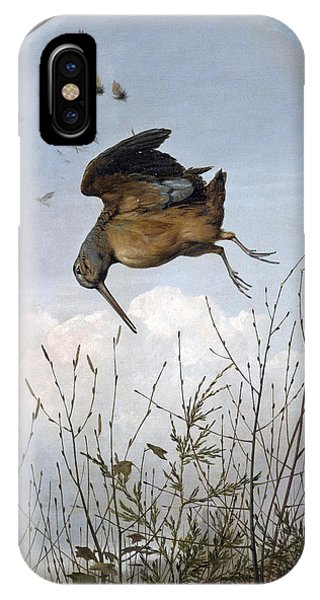 Woodcock iPhone Case - Woodcock by Thomas Hewes Hinckley