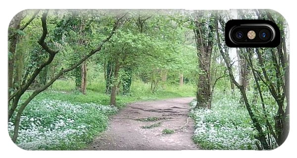 Woodland Path 1 IPhone Case
