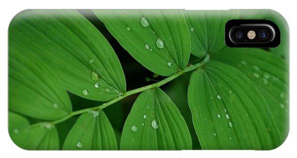 Woodland Rain IPhone Case