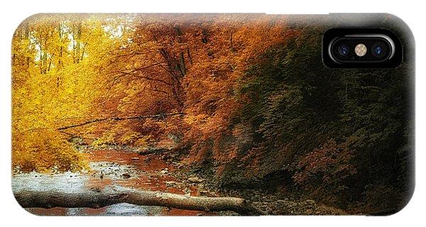 Woods iPhone Case - Woodland Stream by Tom Mc Nemar