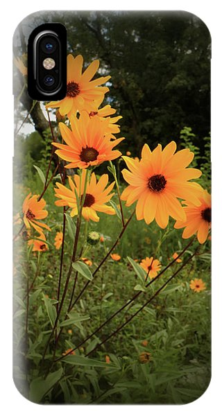 Woodland Sunflower IPhone Case