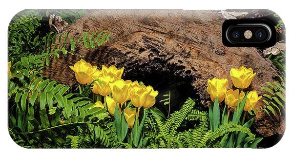 Botanical Garden iPhone Case - Woodland Tulip Garden by Tom Mc Nemar