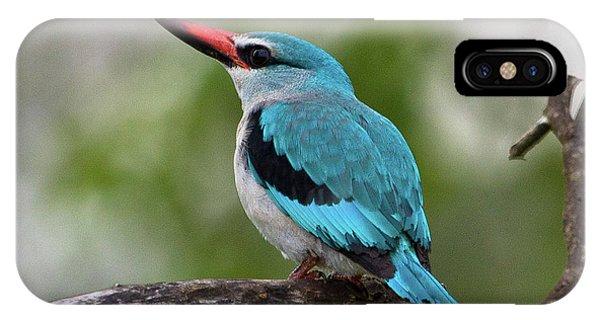 Woodlands Kingfisher Phone Case by Jennifer Ludlum