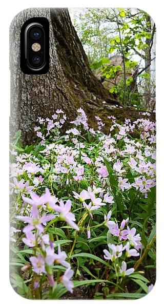 Woodlands Spring Beauty IPhone Case
