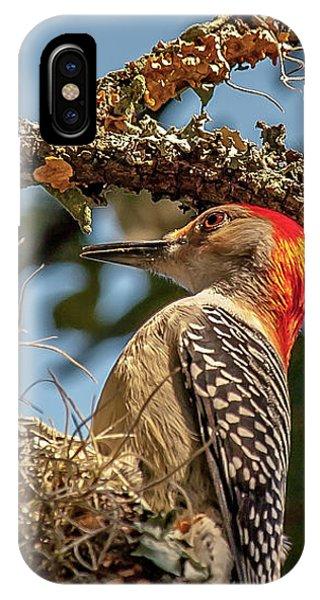Woodpecker Closeup IPhone Case