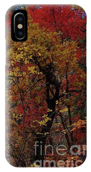 Woods In Oak Creek Canyon, Arizona IPhone Case