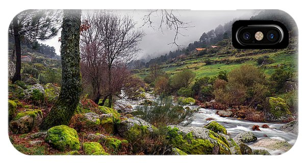 Creek iPhone Case - Woods Landscape by Carlos Caetano