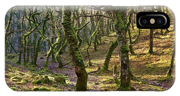 Woods Near Badgeworthy Water Exmoor IPhone Case