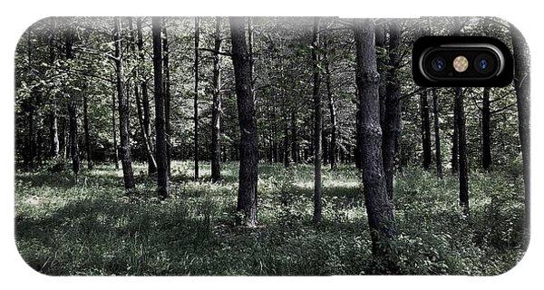 Woods Walk IPhone Case