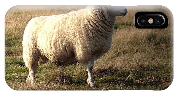 Sheep iPhone X / XS Case - Woolly Coat by Sharon Lisa Clarke