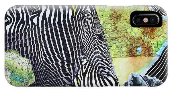 World Of Zebras IPhone Case
