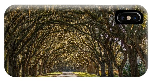 Wormsloe Historic Site IPhone Case