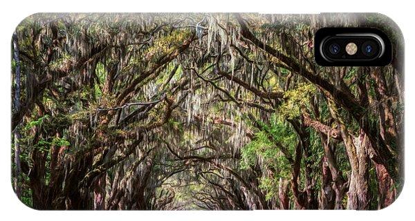 Wormsloe Plantation Oaks IPhone Case