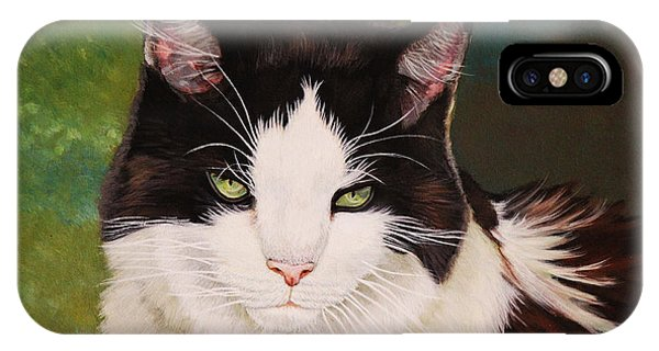 iPhone Case - Wozzle - Domestic Cat by Antonio Marchese
