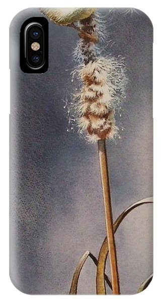 Wren And Cattails IPhone Case