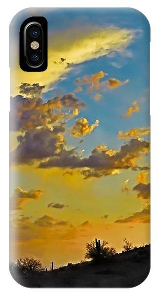 Y Cactus Sunset 10 IPhone Case