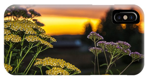Yarrow At Sunset IPhone Case