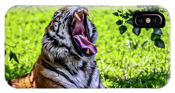 Yawning Tiger IPhone Case