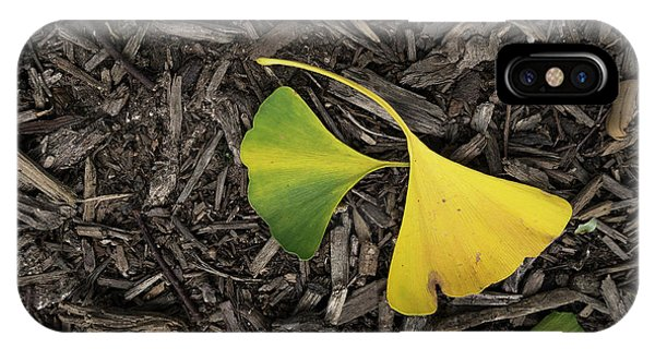 Yellow And Green Gingko IPhone Case
