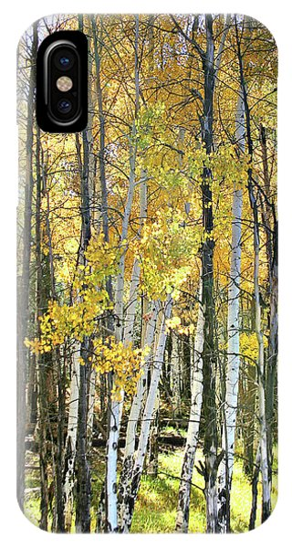 Yellow Aspens IPhone Case